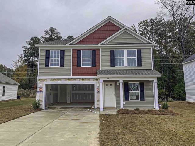 225 Elsoma Drive, Chapin, SC 29036 (MLS #479056) :: The Meade Team