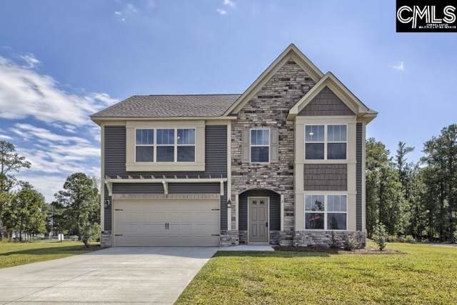 233 Elsoma Drive, Chapin, SC 29036 (MLS #479074) :: EXIT Real Estate Consultants