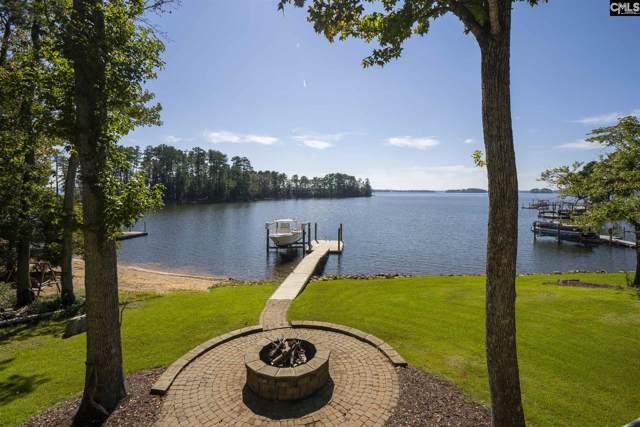 146 Lake Vista Drive, Chapin, SC 29036 (MLS #481823) :: The Meade Team