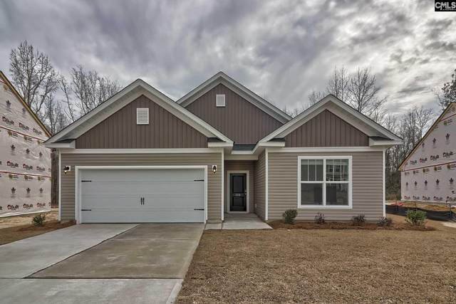 333 Summer Creek Drive, West Columbia, SC 29172 (MLS #484180) :: Resource Realty Group