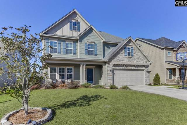 1141 Portrait Hill Drive, Chapin, SC 29036 (MLS #486747) :: The Meade Team