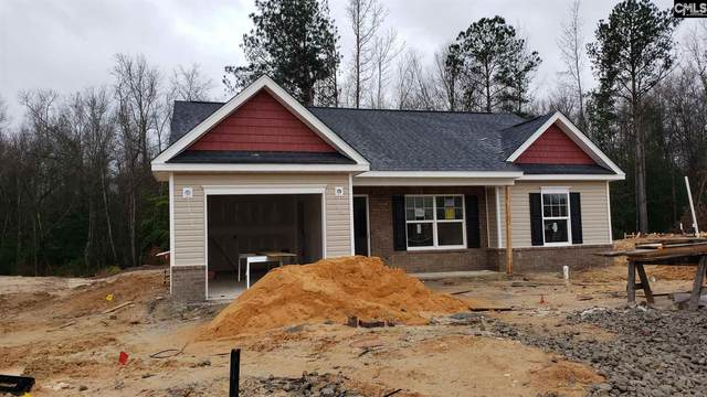 349 Summer Creek Drive, West Columbia, SC 29172 (MLS #486798) :: Resource Realty Group