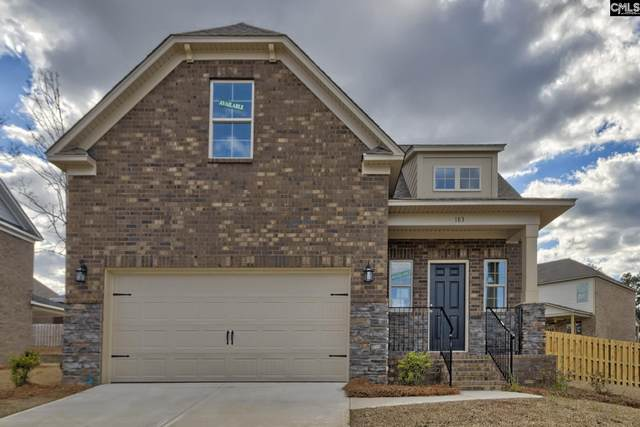 183 Cedar Chase Lane, Irmo, SC 29063 (MLS #487584) :: EXIT Real Estate Consultants