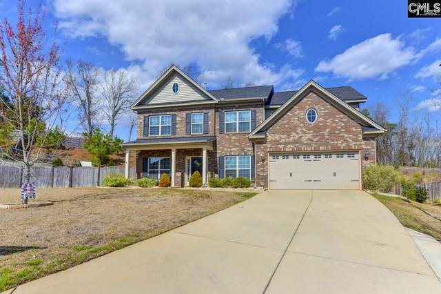 28 Featherfoil Court, Chapin, SC 29036 (MLS #489582) :: The Neighborhood Company at Keller Williams Palmetto
