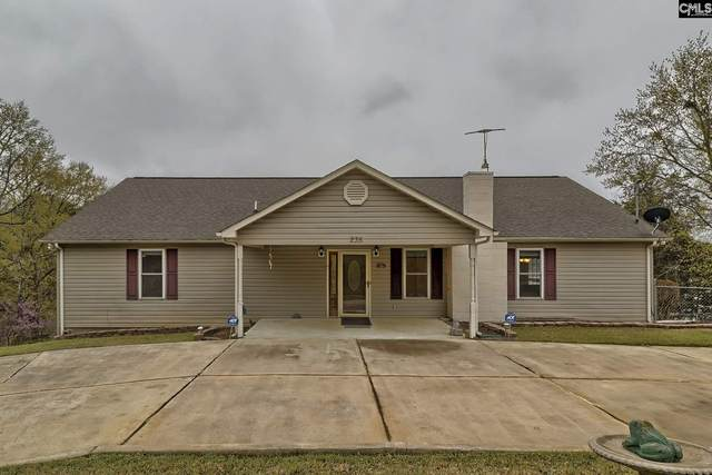235 Lake Shore Drive, Winnsboro, SC 29180 (MLS #490845) :: The Olivia Cooley Group at Keller Williams Realty