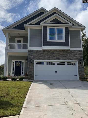 409 Woolbright Court, Chapin, SC 29036 (MLS #494860) :: The Olivia Cooley Group at Keller Williams Realty