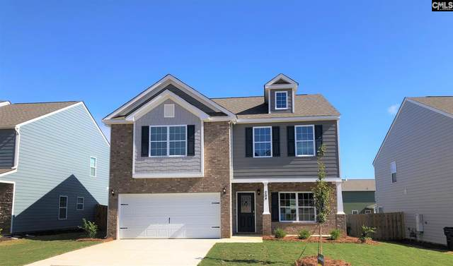 204 Timber Wood Drive, Chapin, SC 29036 (MLS #496747) :: Disharoon Homes