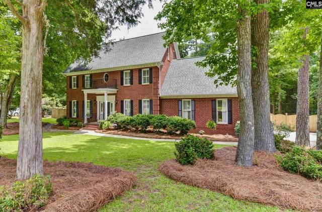 163 Williamstown Way, Columbia, SC 29212 (MLS #497523) :: The Olivia Cooley Group at Keller Williams Realty