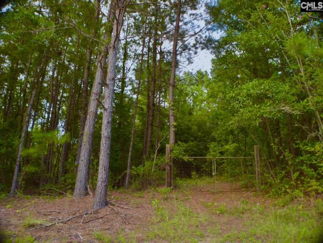 2661 Mccords Ferry Road, Eastover, SC 29044 (MLS #499259) :: The Olivia Cooley Group at Keller Williams Realty