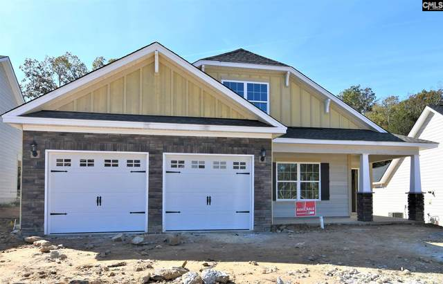 839 Dutchmaster Drive, Chapin, SC 29036 (MLS #500969) :: EXIT Real Estate Consultants