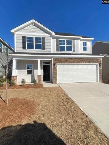 717 S South Sage Drop Road, Blythewood, SC 29016 (MLS #504047) :: Loveless & Yarborough Real Estate