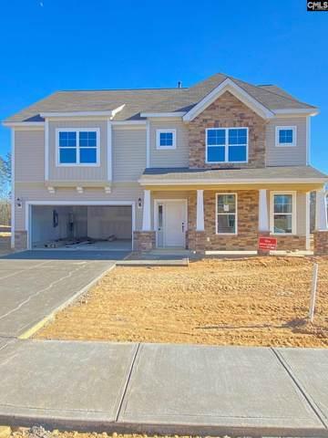 1017 Turtle Stone Road, Blythewood, SC 29016 (MLS #505467) :: Loveless & Yarborough Real Estate