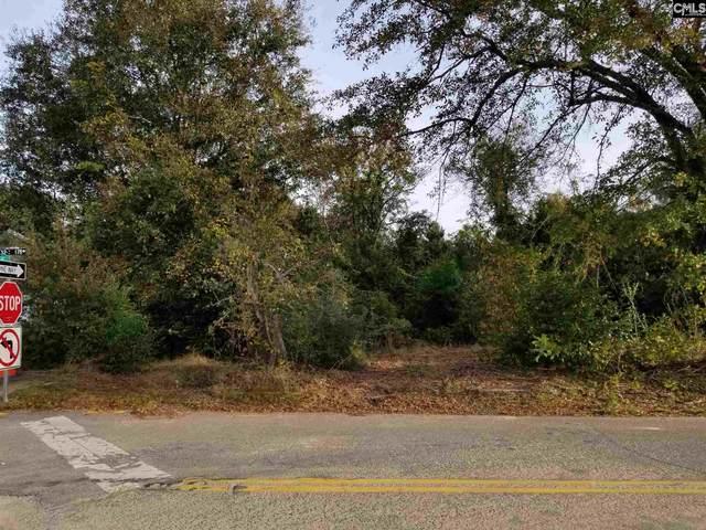 106 N Lake Drive, Lexington, SC 29072 (MLS #507477) :: The Olivia Cooley Group at Keller Williams Realty