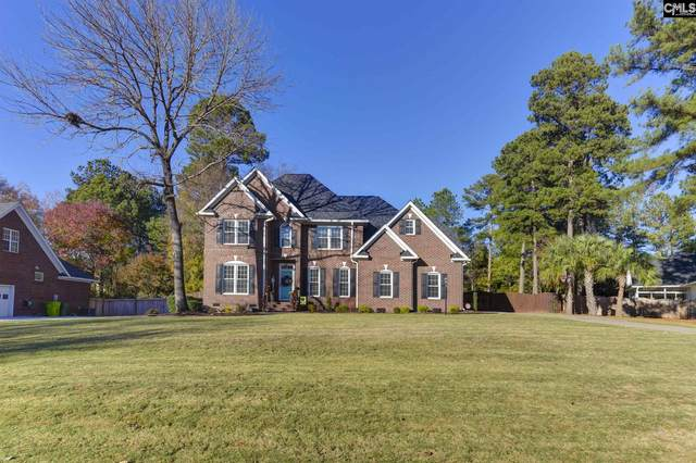 113 Racket Rd, Chapin, SC 29036 (MLS #507645) :: Resource Realty Group