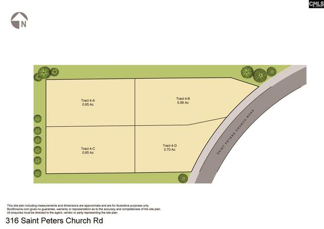316 Saint Peters Church Road, Chapin, SC 29036 (MLS #512429) :: The Neighborhood Company at Keller Williams Palmetto
