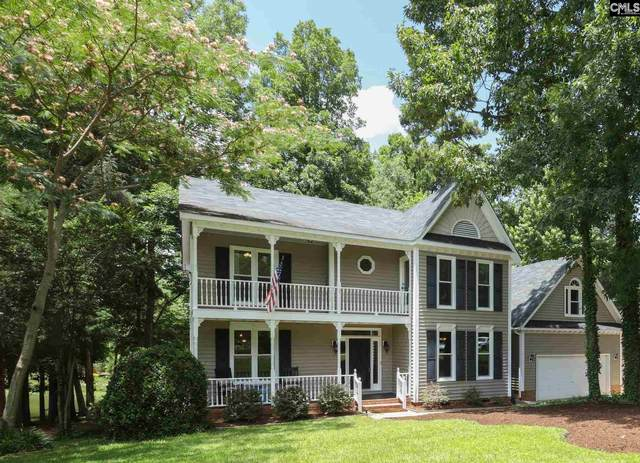 141 Stoney Point Lane, Chapin, SC 29036 (MLS #520395) :: EXIT Real Estate Consultants