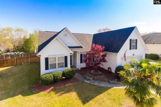 108 Deweese Court, Lexington, SC 29072 (MLS #419805) :: Exit Real Estate Consultants