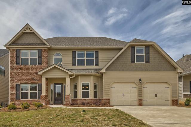 212 Village Green Way, Lexington, SC 29072 (MLS #437204) :: Home Advantage Realty, LLC