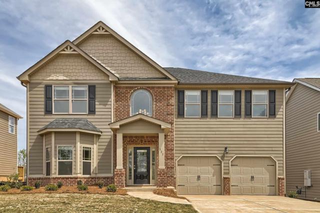 305 Village Green Way #107, Lexington, SC 29072 (MLS #437209) :: Home Advantage Realty, LLC