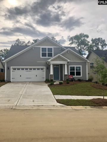 362 Renoir Lane #186, Chapin, SC 29063 (MLS #437868) :: EXIT Real Estate Consultants