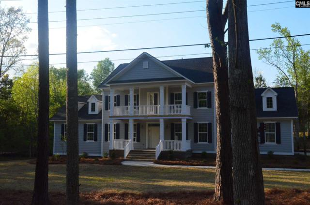 3006 Wessinger Road #1, Chapin, SC 29036 (MLS #441424) :: EXIT Real Estate Consultants