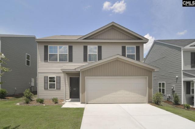 245 Drooping Leaf Road #305, Lexington, SC 29072 (MLS #446784) :: EXIT Real Estate Consultants