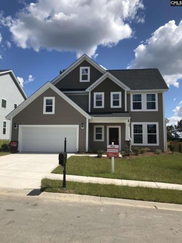 562 Silverbell Court #218, Lexington, SC 29073 (MLS #447351) :: EXIT Real Estate Consultants