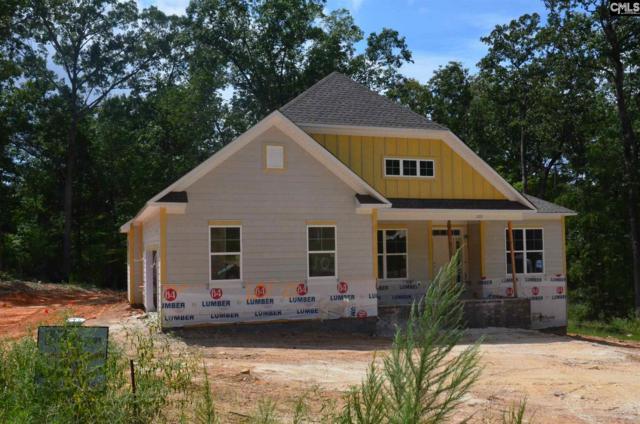 205 Limestone Road, Chapin, SC 29036 (MLS #451133) :: EXIT Real Estate Consultants