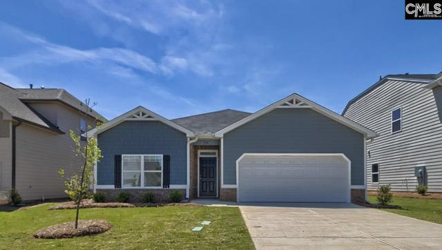 718 Autumn Shiloh Drive, Chapin, SC 29036 (MLS #453378) :: EXIT Real Estate Consultants