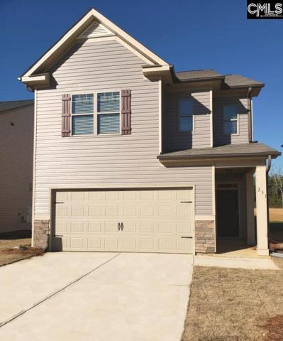231 Bickley View Court, Chapin, SC 29036 (MLS #454956) :: EXIT Real Estate Consultants