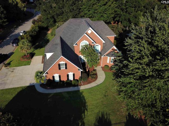 409 Sienna Drive, Chapin, SC 29036 (MLS #455580) :: EXIT Real Estate Consultants