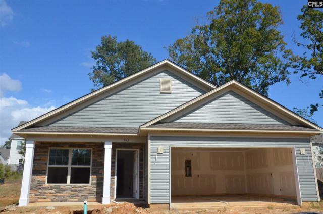 543 Connecticut Avenue, Chapin, SC 29036 (MLS #455924) :: EXIT Real Estate Consultants