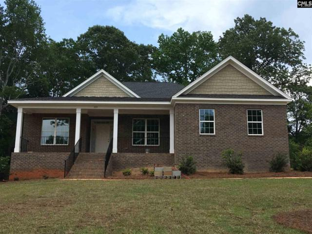 239 Hilton View Court, Chapin, SC 29036 (MLS #458191) :: EXIT Real Estate Consultants
