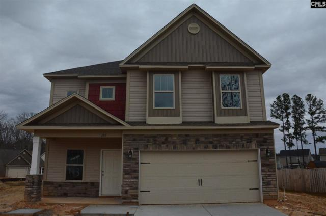 207 Ventnor Avenue, Chapin, SC 29036 (MLS #458364) :: EXIT Real Estate Consultants