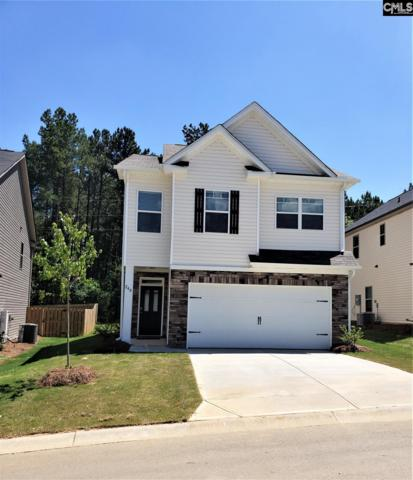 240 Bickley View Court, Chapin, SC 29036 (MLS #461263) :: EXIT Real Estate Consultants