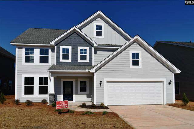 1259 Portrait Hill Drive, Chapin, SC 29036 (MLS #461706) :: EXIT Real Estate Consultants