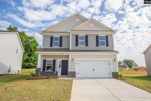426 Glen Arven Court, Chapin, SC 29036 (MLS #461926) :: EXIT Real Estate Consultants
