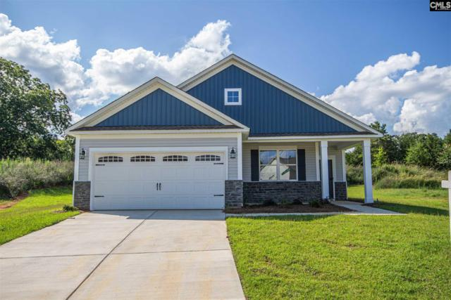 316 Arcadia Court, Chapin, SC 29036 (MLS #469053) :: The Olivia Cooley Group at Keller Williams Realty