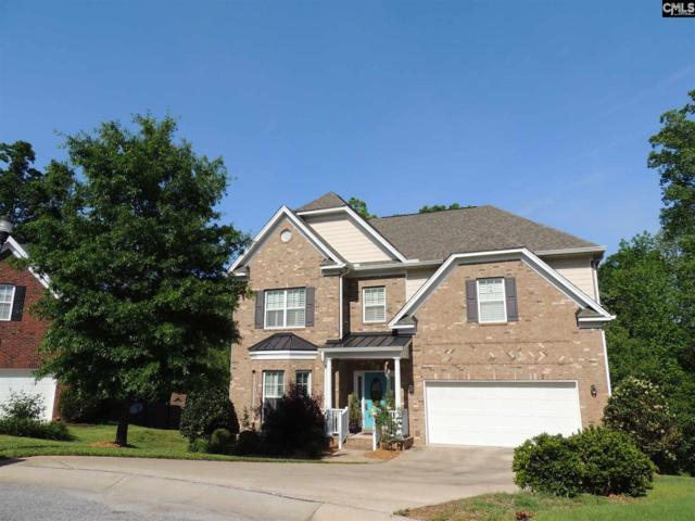 132 Red Alder Court, Lexington, SC 29072 (MLS #469774) :: Home Advantage Realty, LLC