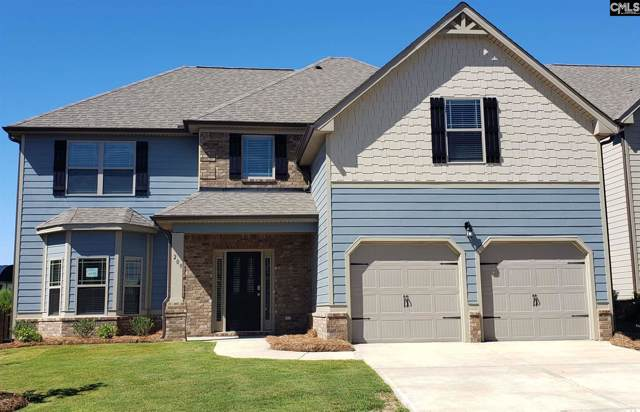 209 Morning Dew Drive, Lexington, SC 29072 (MLS #470554) :: The Olivia Cooley Group at Keller Williams Realty