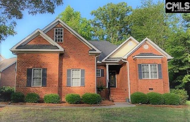 387 Night Harbor Drive, Chapin, SC 29036 (MLS #471174) :: EXIT Real Estate Consultants