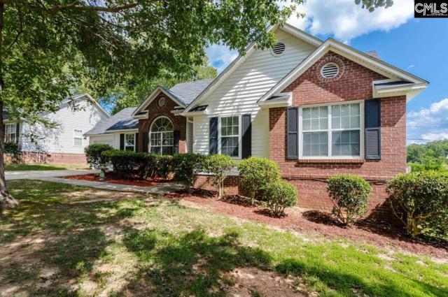 119 Sweet Thorne Road, Irmo, SC 29063 (MLS #471825) :: Home Advantage Realty, LLC