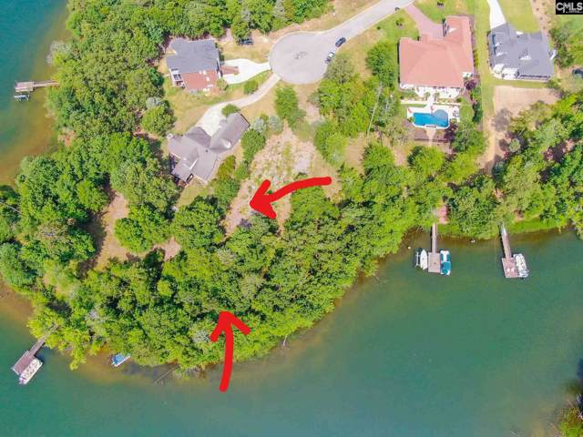 171 Summer Bay Dr, Chapin, SC 29036 (MLS #472792) :: Resource Realty Group