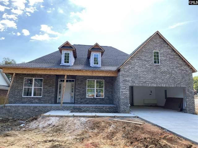 223 Cedar Hollow Lane, Irmo, SC 29063 (MLS #472793) :: Loveless & Yarborough Real Estate