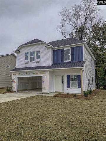 229 Elsoma Drive, Chapin, SC 29036 (MLS #479073) :: The Meade Team