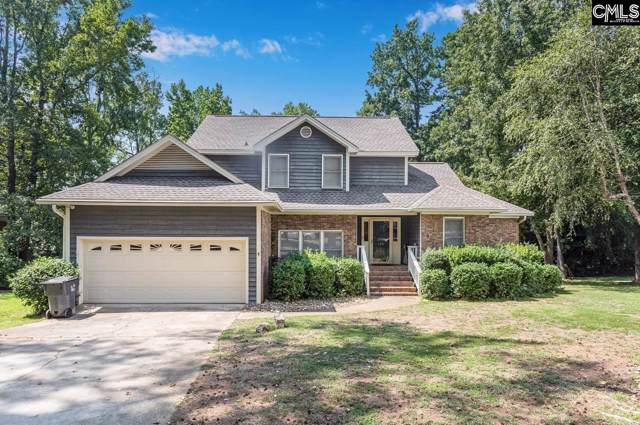 134 Lake Vista Dr, Chapin, SC 29036 (MLS #479265) :: The Olivia Cooley Group at Keller Williams Realty