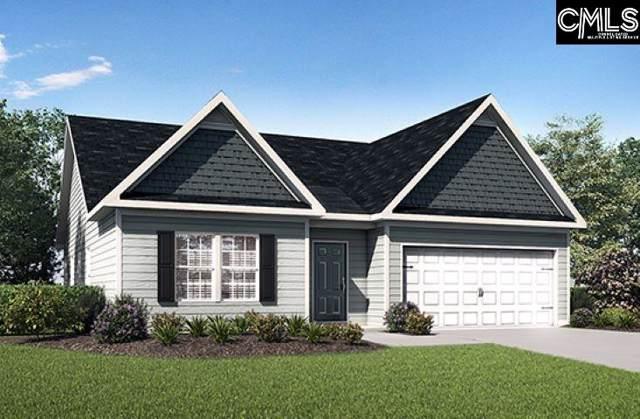 239 Common Reed Drive, Gilbert, SC 29054 (MLS #479763) :: Home Advantage Realty, LLC