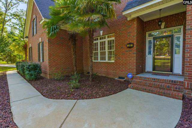 201 Lookout Pointes Drive, Chapin, SC 29036 (MLS #481714) :: The Meade Team