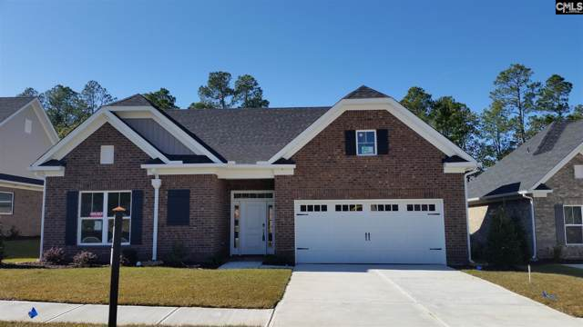 225 Mary Locke Court, Elgin, SC 29045 (MLS #482414) :: NextHome Specialists