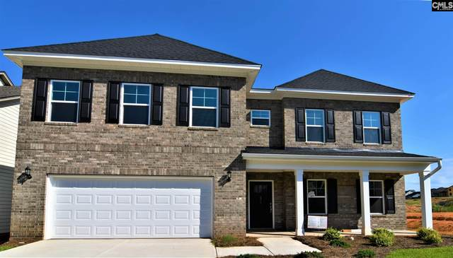 471 Malachite Drive, Chapin, SC 29072 (MLS #495099) :: The Olivia Cooley Group at Keller Williams Realty